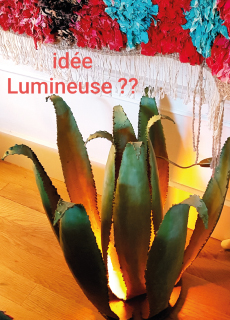 Ambre nomade Cactus Agave lumiere